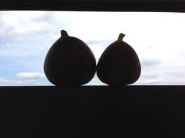 Figs and Sky